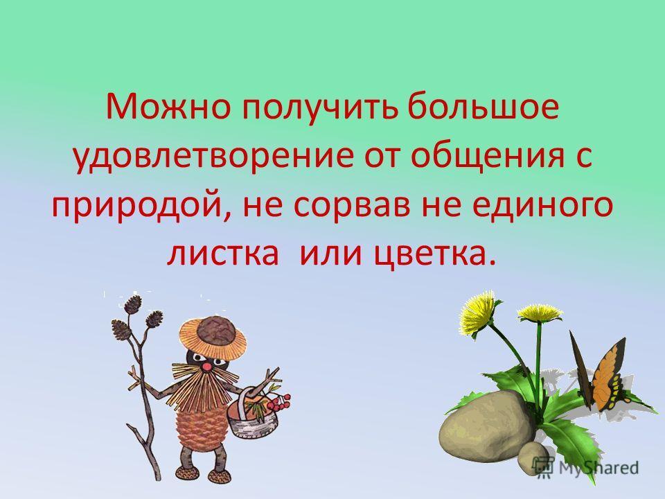 Можно получить большое удовлетворение от общения с природой, не сорвав не единого листка или цветка.