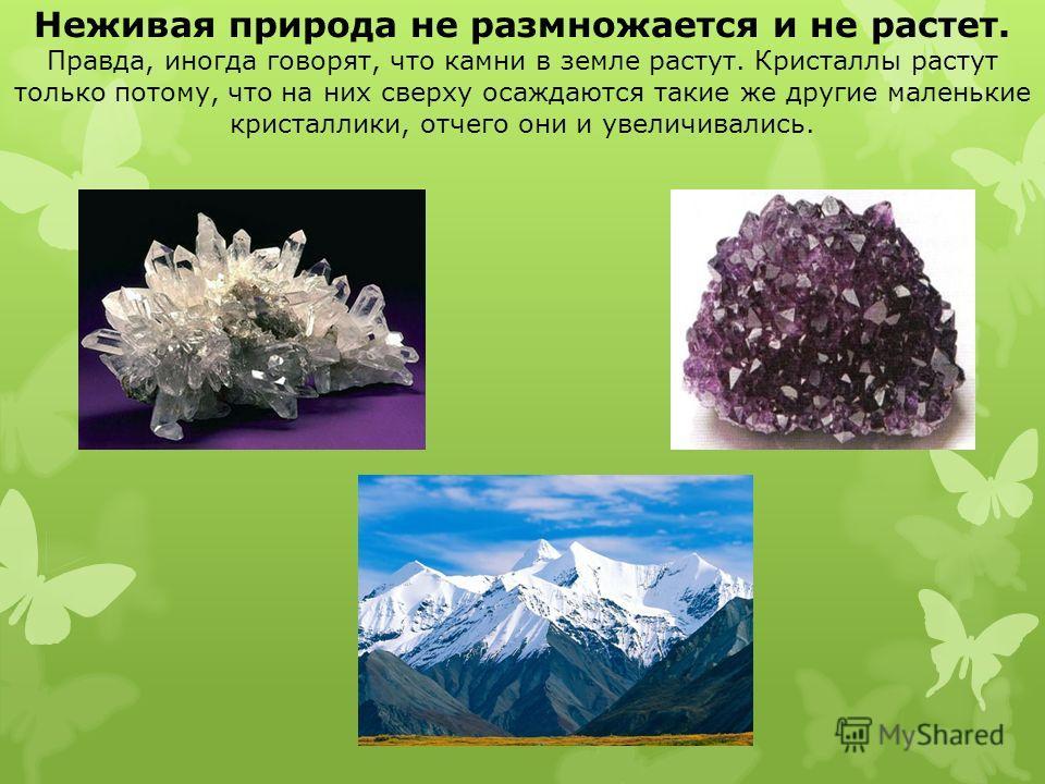Неживая природа не размножается и не растет. Правда, иногда говорят, что камни в земле растут. Кристаллы растут только потому, что на них сверху осаждаются такие же другие маленькие кристаллики, отчего они и увеличивались.