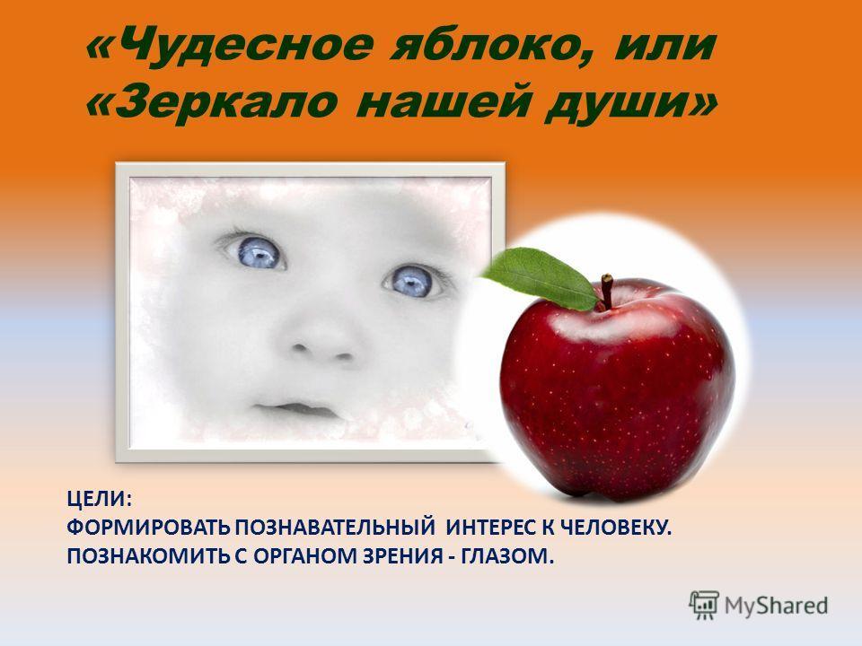ЦЕЛИ: ФОРМИРОВАТЬ ПОЗНАВАТЕЛЬНЫЙ ИНТЕРЕС К ЧЕЛОВЕКУ. ПОЗНАКОМИТЬ С ОРГАНОМ ЗРЕНИЯ - ГЛАЗОМ. «Чудесное яблоко, или «Зеркало нашей души»
