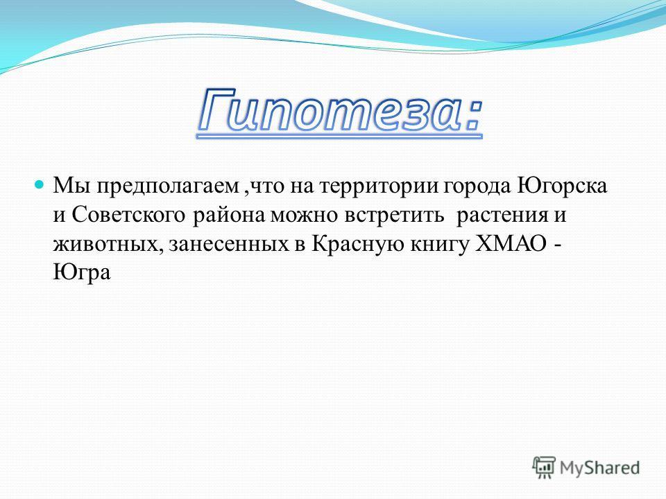 Мы предполагаем,что на территории города Югорска и Советского района можно встретить растения и животных, занесенных в Красную книгу ХМАО - Югра