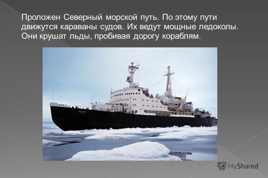 Проложен Северный морской путь. По этому пути движутся караваны судов. Их ведут мощные ледоколы. Они крушат льды, пробивая дорогу кораблям.