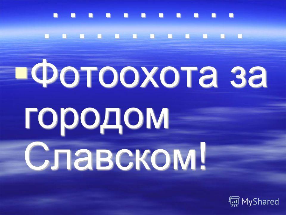 П П Фотоохота за городом Славском!
