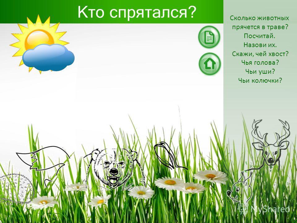 Кто спрятался? Сколько животных прячется в траве? Посчитай. Назови их. Скажи, чей хвост? Чья голова? Чьи уши? Чьи колючки? \