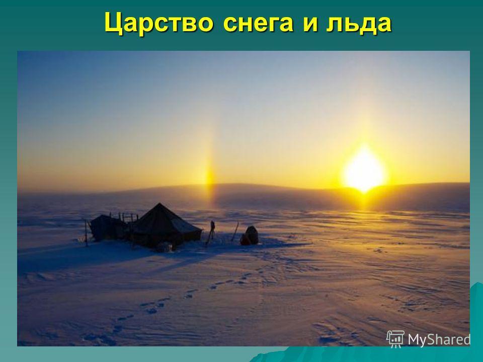 Царство снега и льда Царство снега и льда