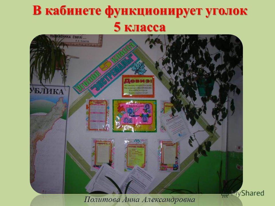 В кабинете функционирует уголок 5 класса Политова Анна Александровна
