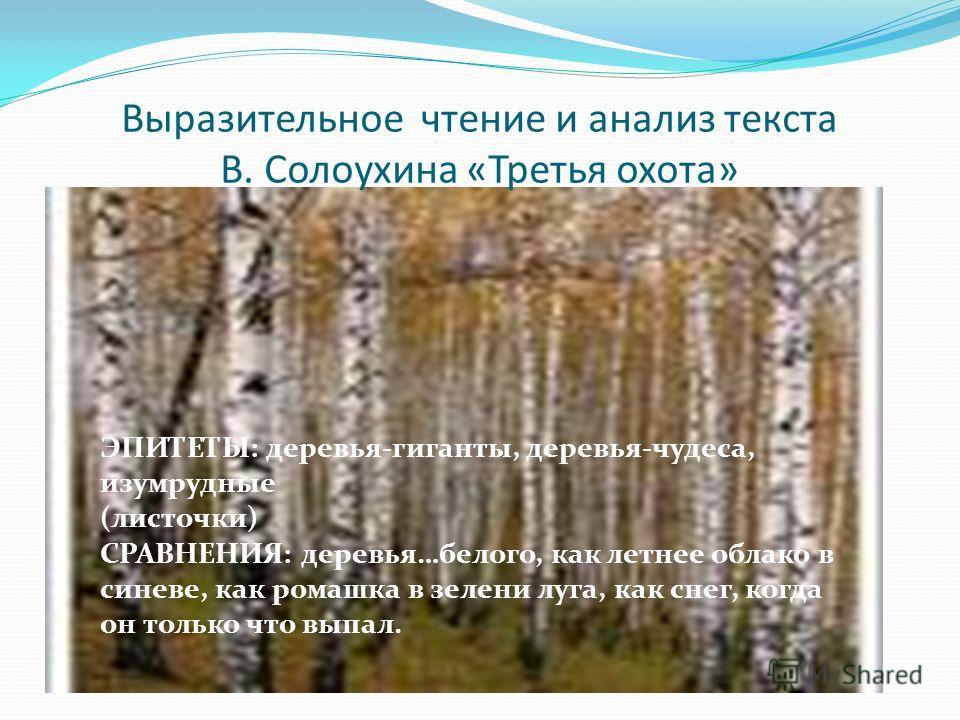 Выразительное чтение и анализ текста В. Солоухина «Третья охота» ЭПИТЕТЫ: деревья-гиганты, деревья-чудеса, изумрудные (листочки) СРАВНЕНИЯ: деревья…белого, как летнее облако в синеве, как ромашка в зелени луга, как снег, когда он только что выпал.