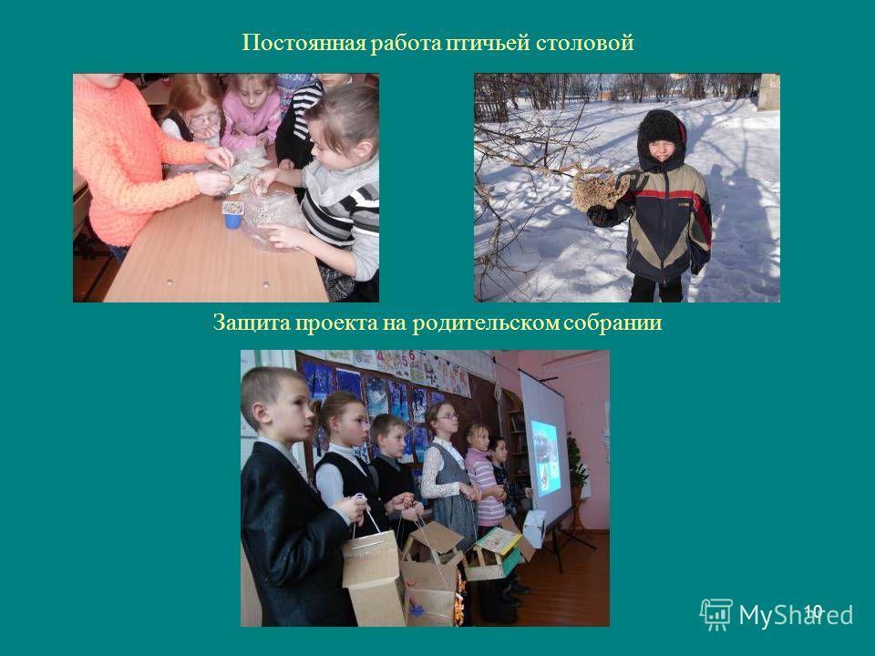 10 Постоянная работа птичьей столовой Защита проекта на родительском собрании
