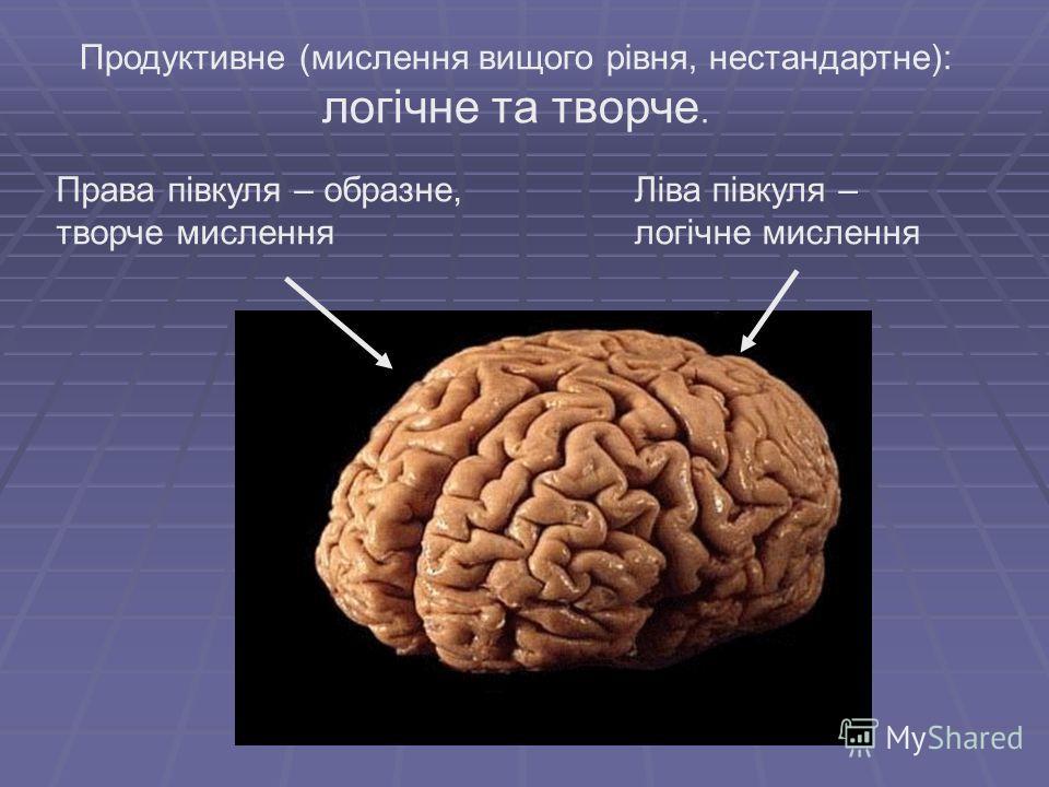 Права півкуля – образне, творче мислення Ліва півкуля – логічне мислення Продуктивне (мислення вищого рівня, нестандартне): логічне та творче.
