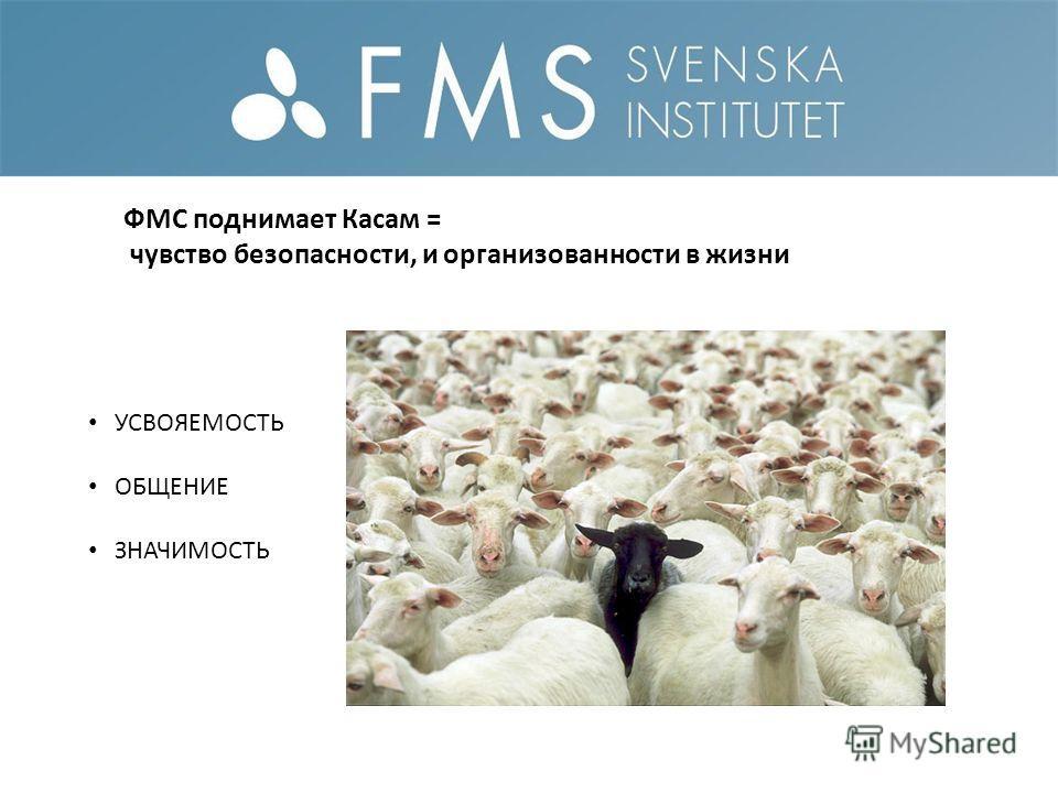 ФМС поднимает Касам = чувство безопасности, и организованности в жизни УСВОЯЕМОСТЬ ОБЩЕНИЕ ЗНАЧИМОСТЬ