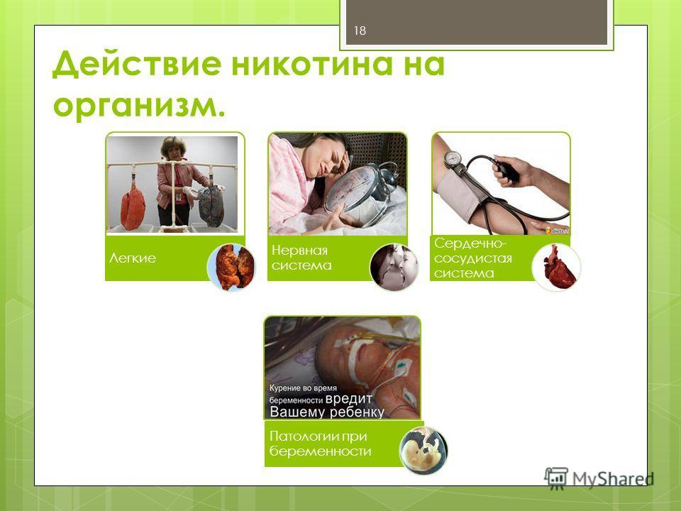 Действие никотина на организм. Легкие Нервная система Сердечно- сосудистая система Патологии при беременности 18