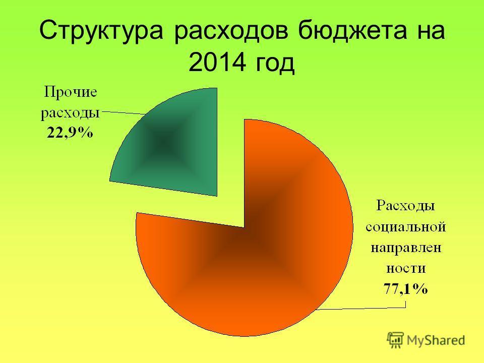 Структура расходов бюджета на 2014 год