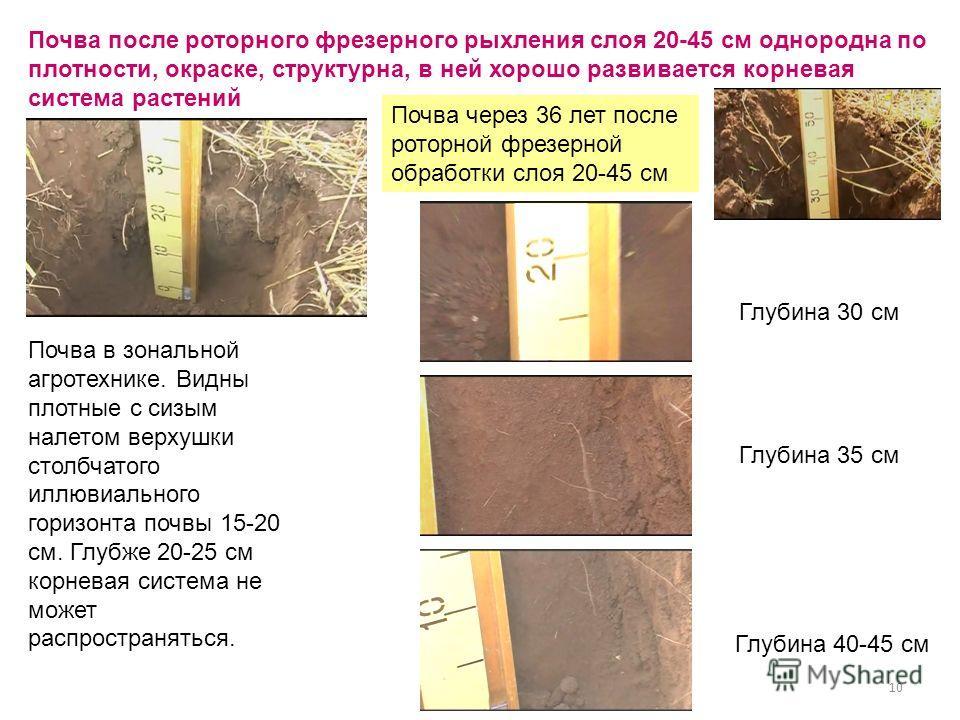 10 Почва в зональной агротехнике. Видны плотные с сизым налетом верхушки столбчатого иллювиального горизонта почвы 15-20 см. Глубже 20-25 см корневая система не может распространяться. Почва после роторного фрезерного рыхления слоя 20-45 см однородна