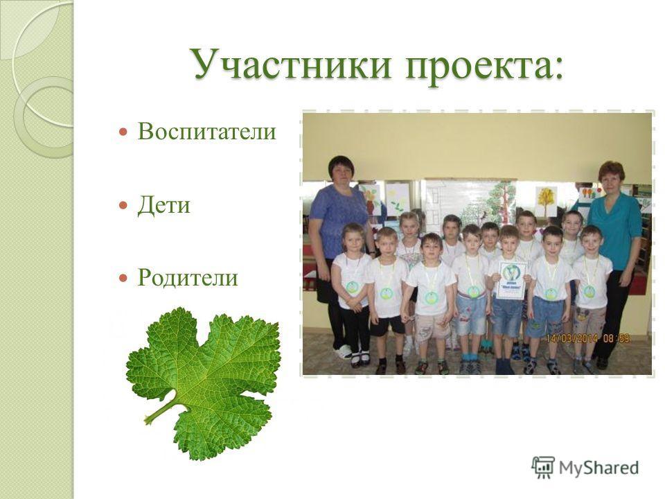 Участники проекта: Воспитатели Дети Родители