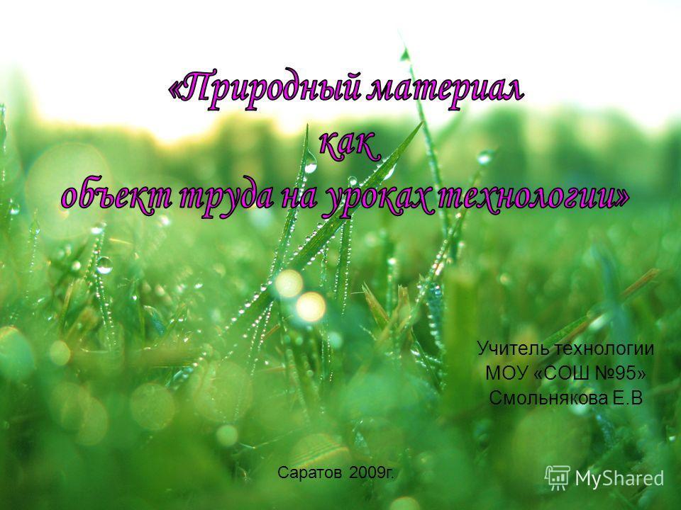 Учитель технологии МОУ «СОШ 95» Смольнякова Е.В Саратов 2009 г.