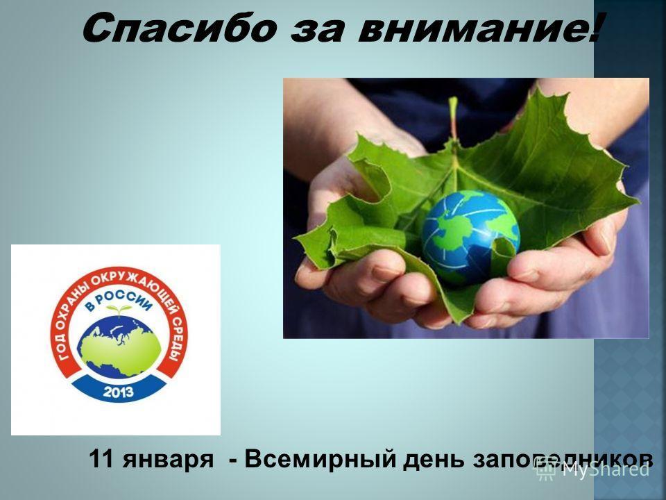 Спасибо за внимание! 11 января - Всемирный день заповедников
