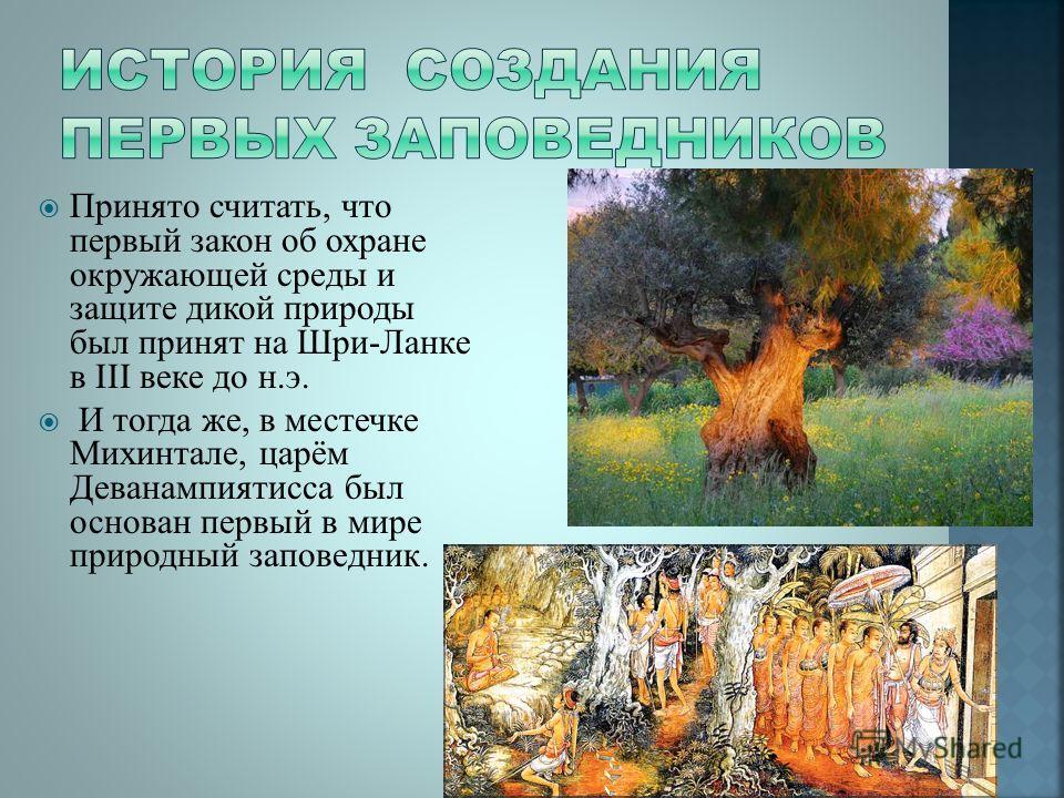 Презентация на тему Реферат на тему Заповедники России  6 Принято считать что первый закон об охране окружающей среды