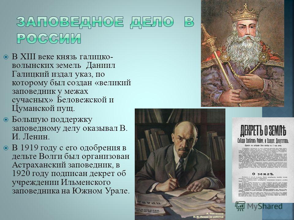 Презентация на тему Реферат на тему Заповедники России  7 В