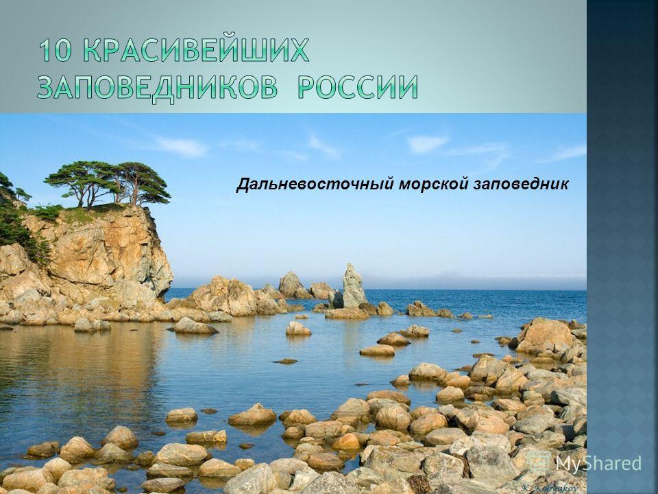 Кавказский заповедник Большой Арктический заповедник Саяно-Шушенский заповедник Васюганские болота Дальневосточный морской заповедник