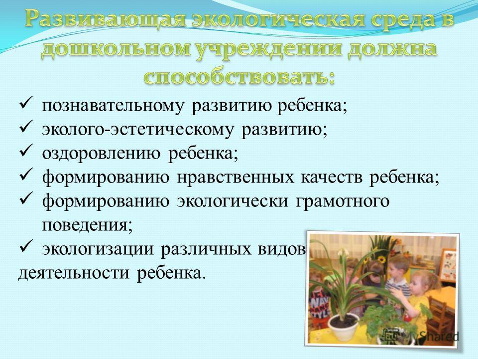 познавательному развитию ребенка; эколого-эстетическому развитию; оздоровлению ребенка; формированию нравственных качеств ребенка; формированию экологически грамотного поведения; экологизации различных видов деятельности ребенка.