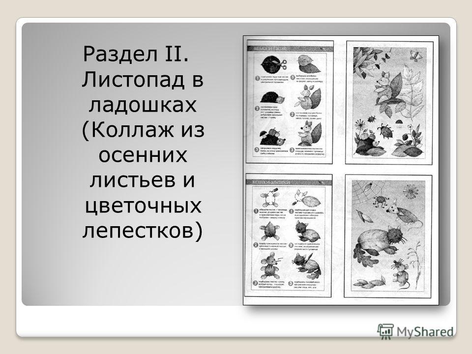 Раздел II. Листопад в ладошках (Коллаж из осенних листьев и цветочных лепестков)