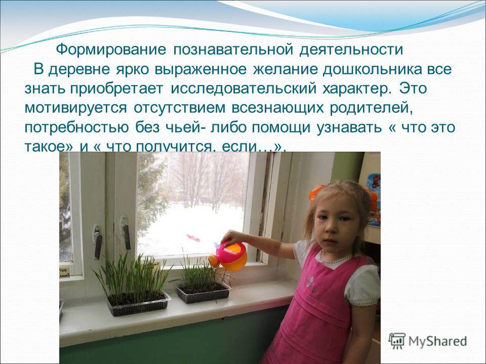 Формирование познавательной деятельности В деревне ярко выраженное желание дошкольника все знать приобретает исследовательский характер. Это мотивируется отсутствием всезнающих родителей, потребностью без чьей- либо помощи узнавать « что это такое» и