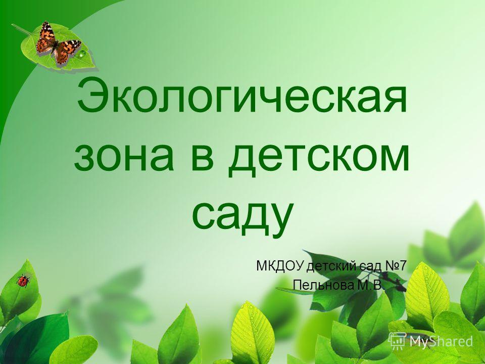 Экологическая зона в детском саду МКДОУ детский сад 7 Пельнова М.В.