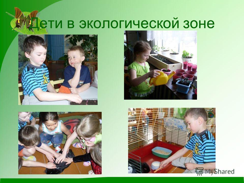 Дети в экологической зоне