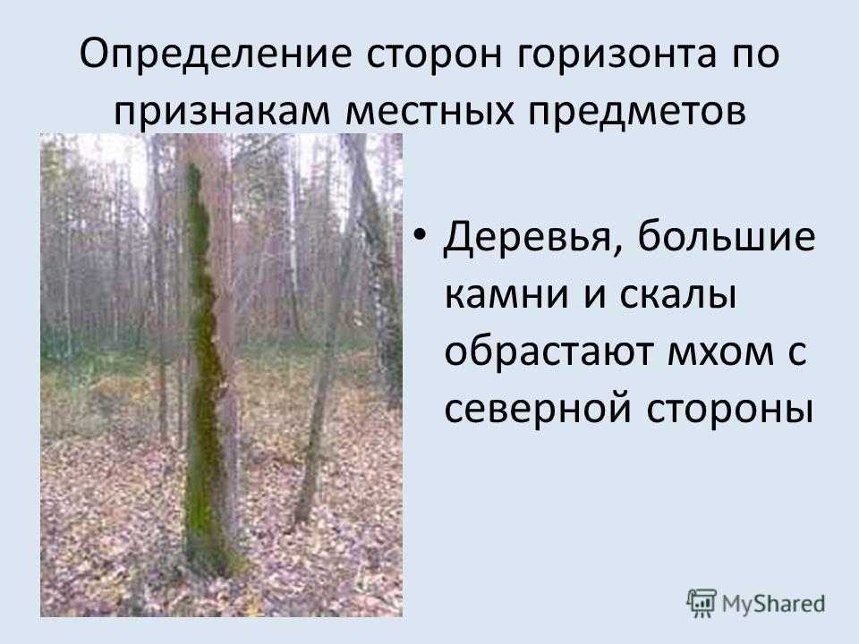Определение сторон горизонта по признакам местных предметов Деревья, большие камни и скалы обрастают мхом с северной стороны
