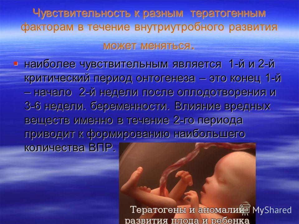 Чувствительность к разным тератогенным факторам в течение внутриутробного развития может меняться. наиболее чувствительным является 1-й и 2-й критический период онтогенеза – это конец 1-й – начало 2-й недели после оплодотворения и 3-6 недели. беремен