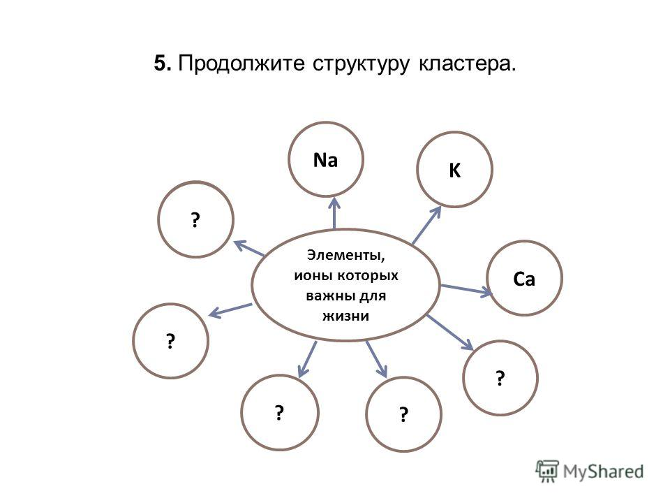 5. Продолжите структуру кластера. Элементы, ионы которых важны для жизни ? ? ? K Na Ca ? ?