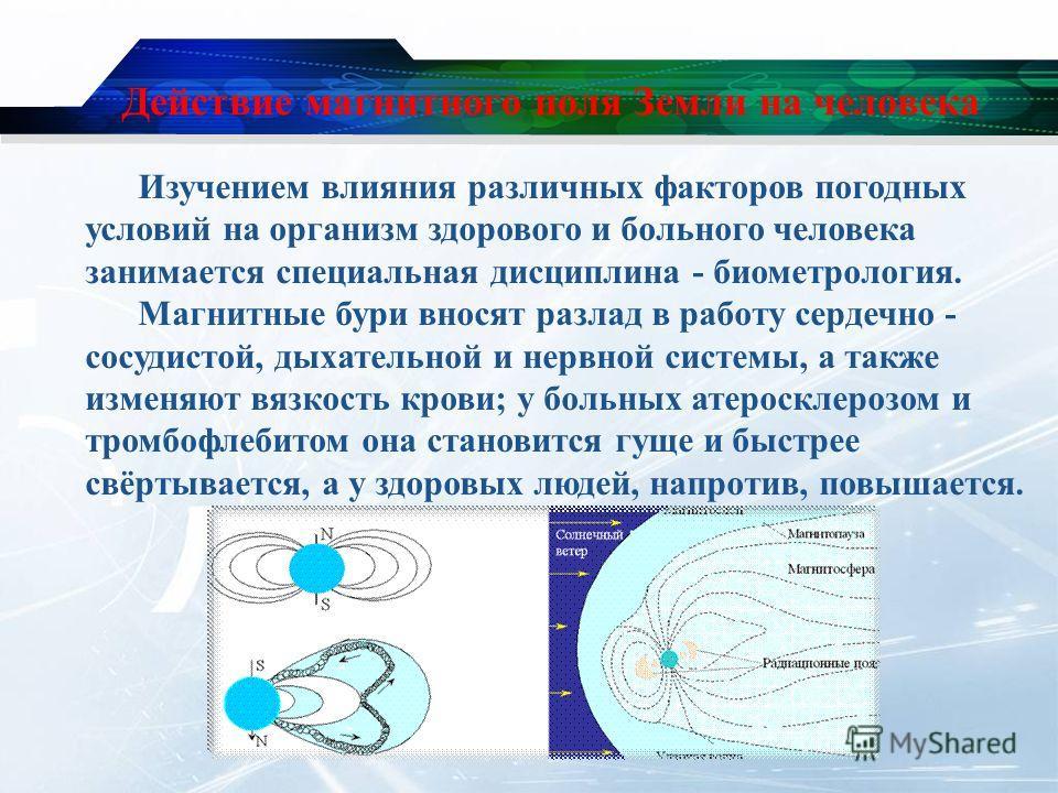 Действие магнитного поля Земли на человека Изучением влияния различных факторов погодных условий на организм здорового и больного человека занимается специальная дисциплина - биометрология. Магнитные бури вносят разлад в работу сердечно - сосудистой,