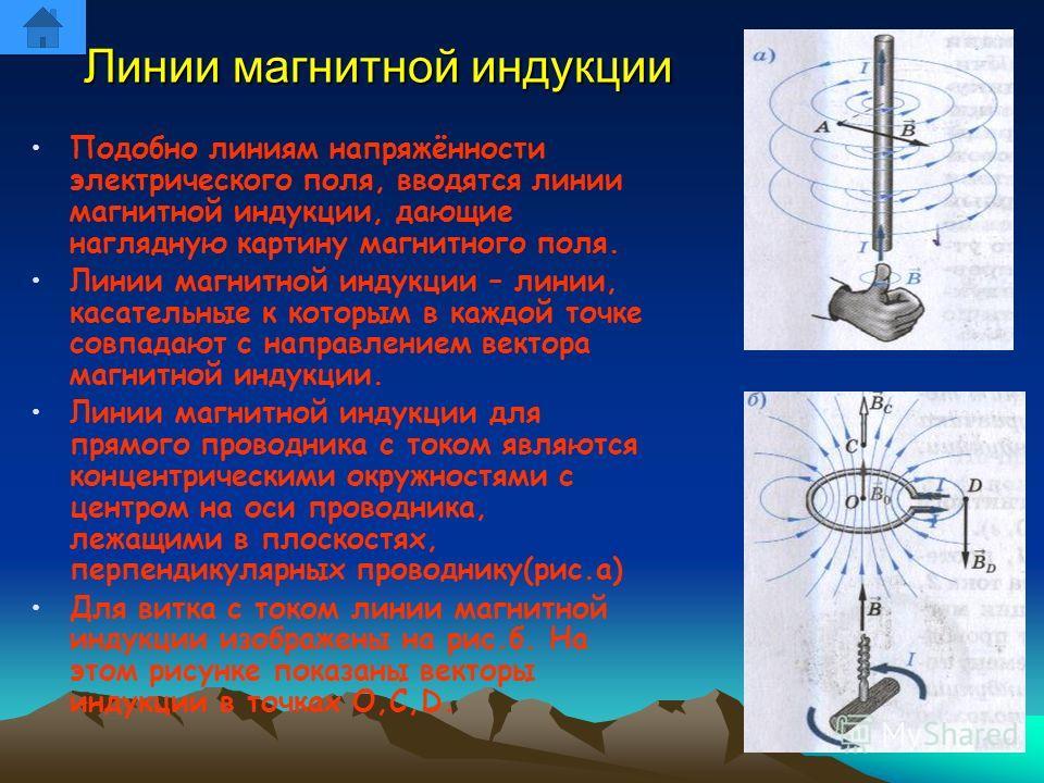 Линии магнитной индукции Подобно линиям напряжённости электрического поля, вводятся линии магнитной индукции, дающие наглядную картину магнитного поля. Линии магнитной индукции – линии, касательные к которым в каждой точке совпадают с направлением ве