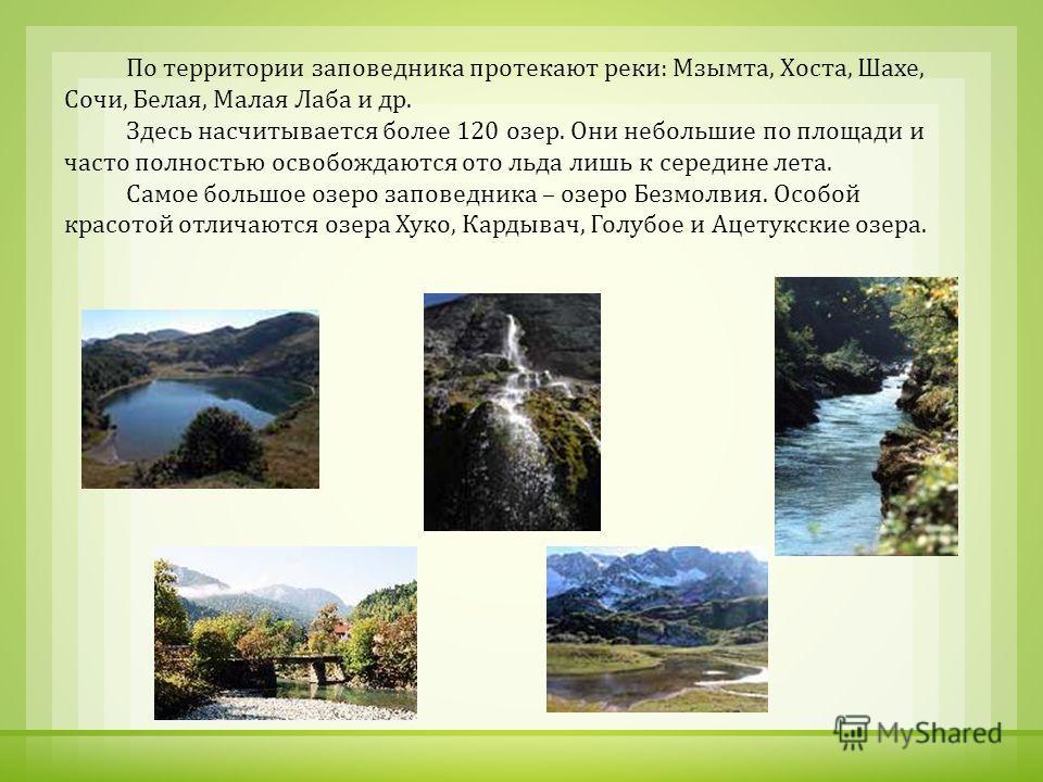 По территории заповедника протекают реки : Мзымта, Хоста, Шахе, Сочи, Белая, Малая Лаба и др. Здесь насчитывается более 120 озер. Они небольшие по площади и часто полностью освобождаются ото льда лишь к середине лета. Самое большое озеро заповедника