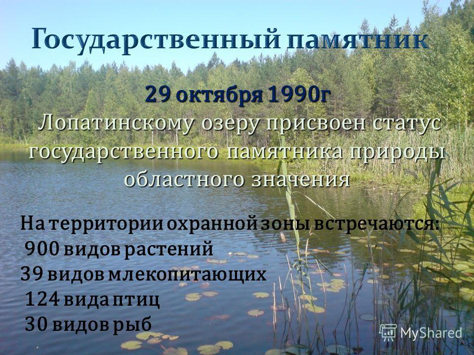 29 октября 1990 г Лопатинскому озеру присвоен статус государственного памятника природы областного значения На территории охранной зоны встречаются: 900 видов растений 39 видов млекопитающих 124 вида птиц 30 видов рыб