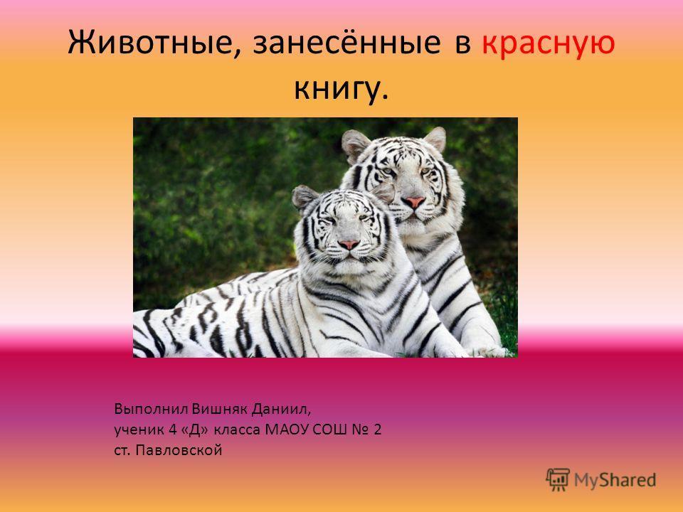 Животные, занесённые в красную книгу. Выполнил Вишняк Даниил, ученик 4 «Д» класса МАОУ СОШ 2 ст. Павловской