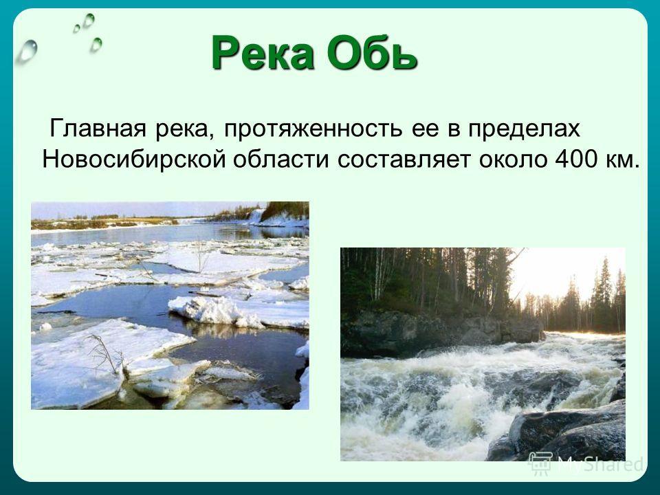 Река Обь Главная река, протяженность ее в пределах Новосибирской области составляет около 400 км.