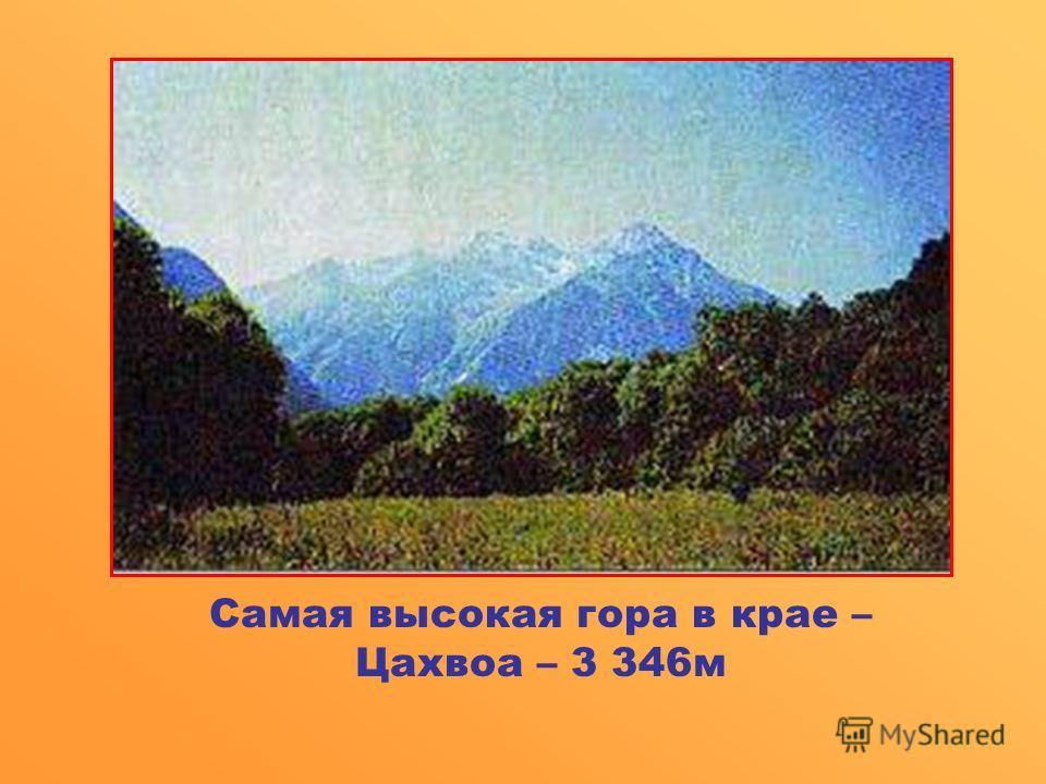 Самая высокая гора в крае – Цахвоа – 3 346 м