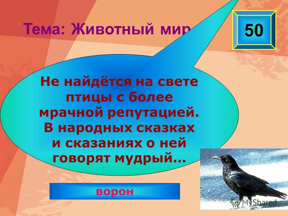 ворон 50 Тема: Животный мир Не найдётся на свете птицы с более мрачной репутацией. В народных сказках и сказаниях о ней говорят мудрый…