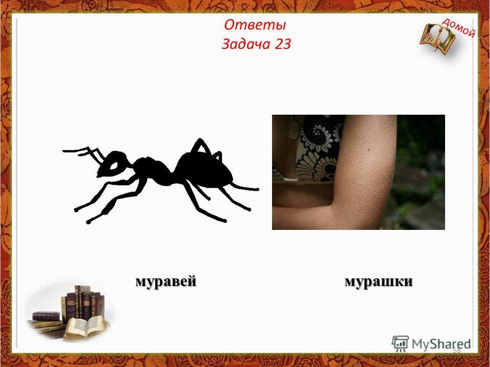 Ответы Задача 23 муравей мурашки домой 58