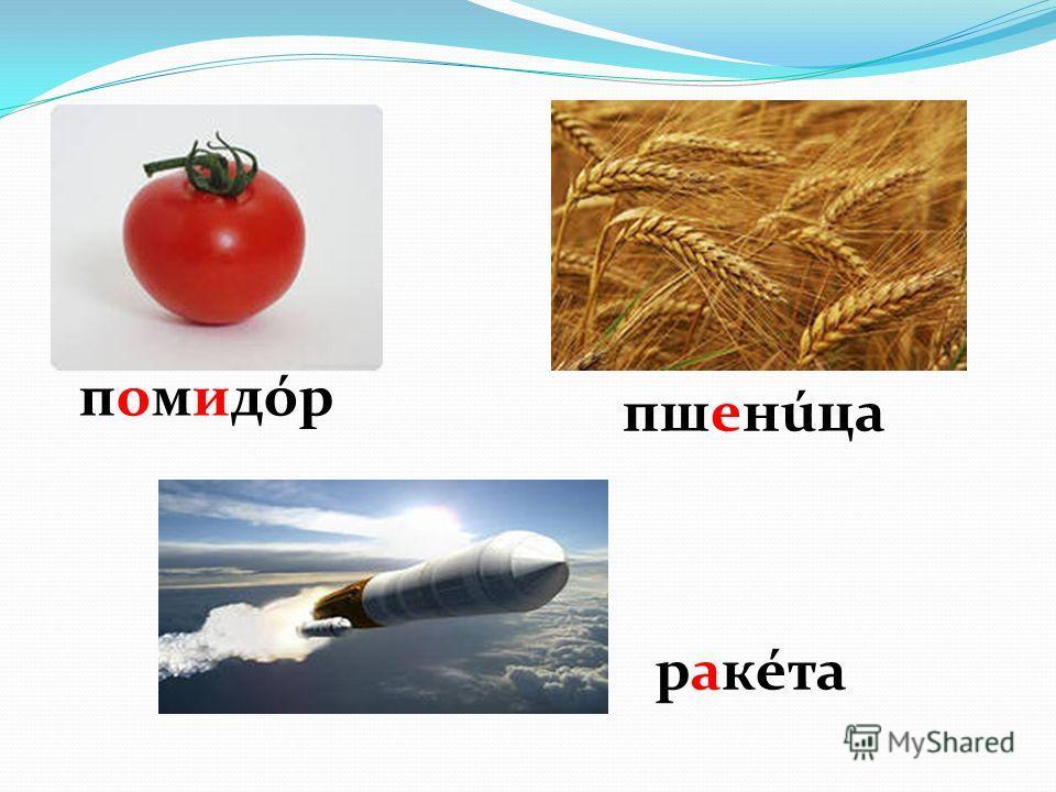 помидóрпомидóр пшенице ракета