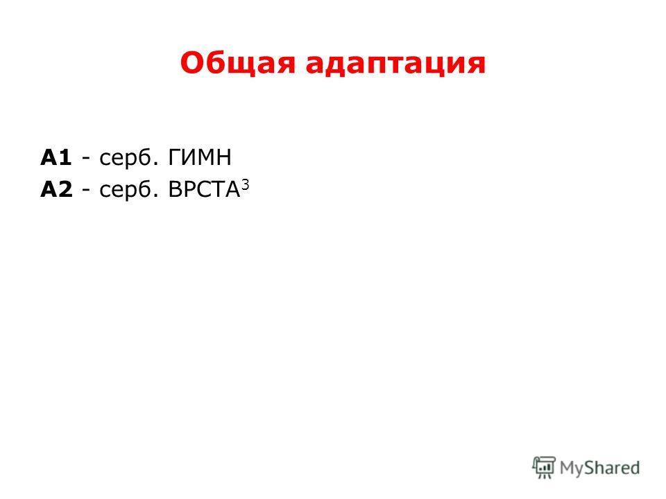 Общая адаптация А1 - серб. ГИМН А2 - серб. ВРСТА 3