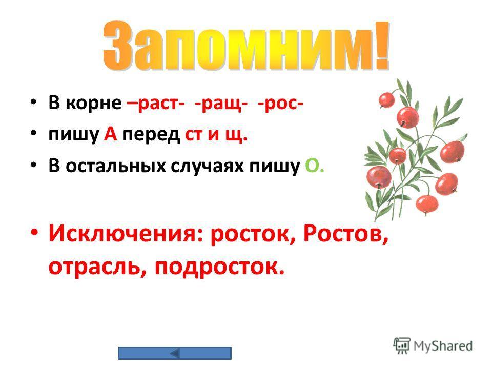 В корне –раст- -ращ- -рос- пишу А перед ст и щ. В остальных случаях пишу О. Исключения: росток, Ростов, отрасль, подросток.