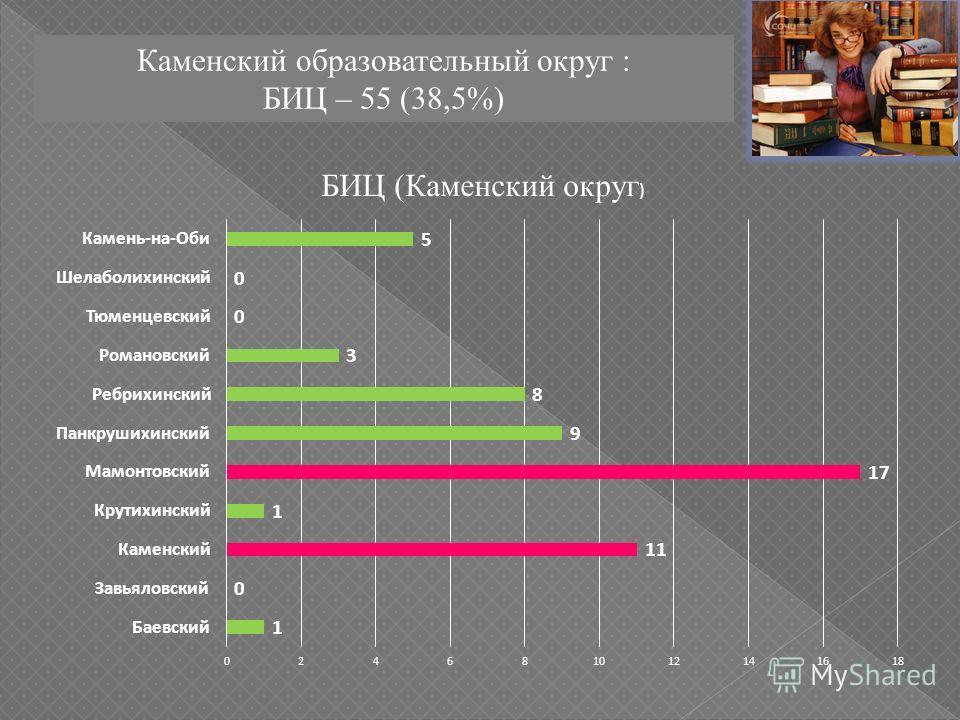 Каменский образовательный округ : БИЦ – 55 (38,5%)