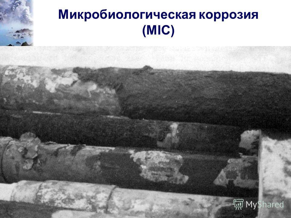 capcis Микробиологическая коррозия (MIC)