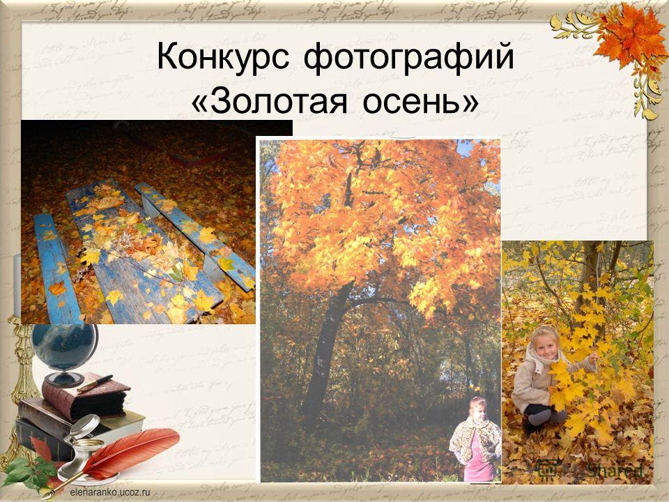 Конкурс фотографий «Золотая осень»