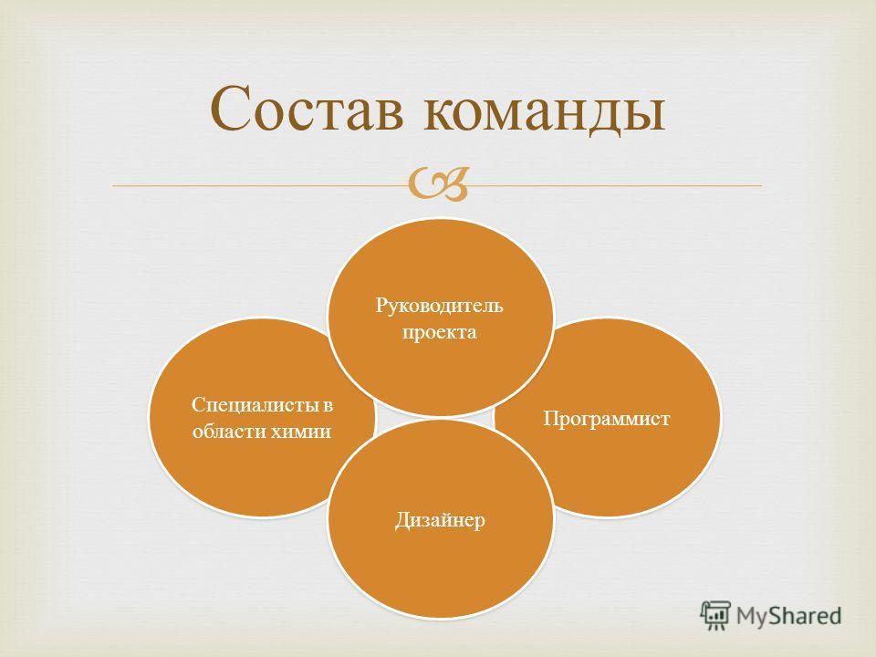 Состав команды Специалисты в области химии Программист Дизайнер Руководитель проекта