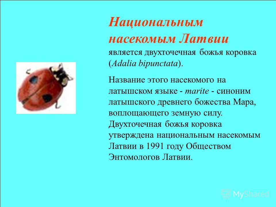 Национальнам насекомым Латвии является двухточечная божья коровка (Adalia bipunctata). Название этого насекомого на латышском языке - marite - синоним латышского древнего божества Мара, воплощающего земную силу. Двухточечная божья коровка утверждена