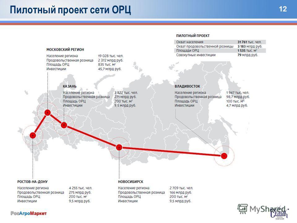 12 Пилотный проект сети ОРЦ