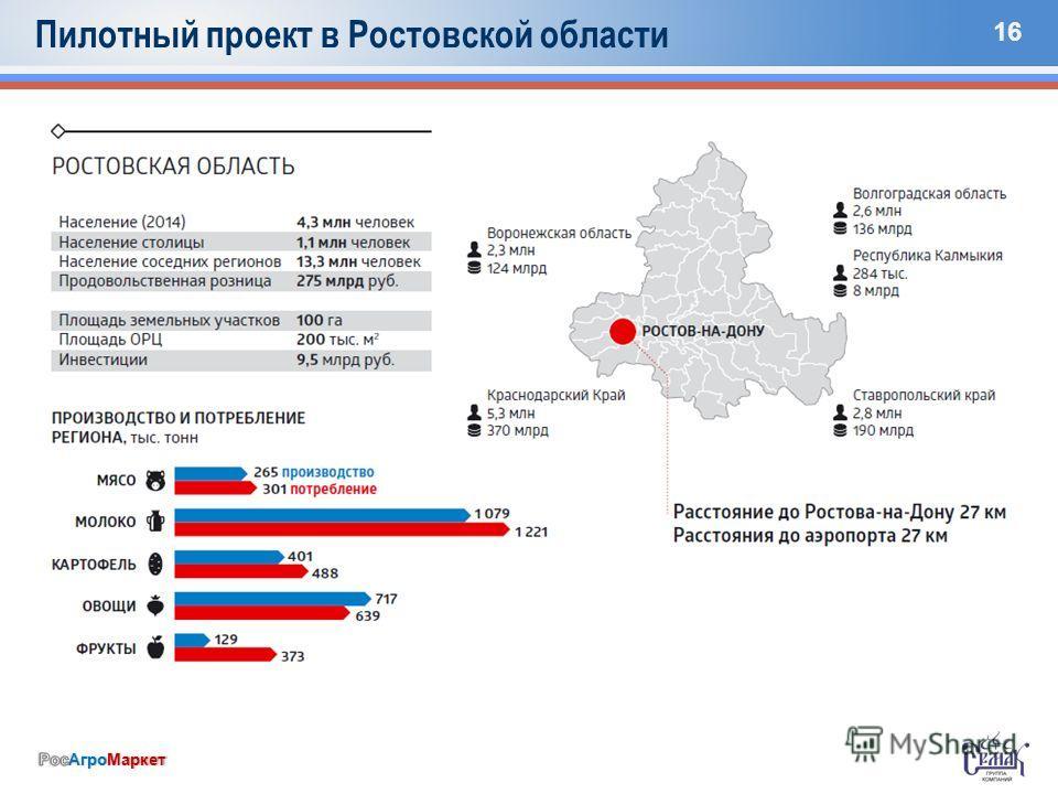 16 Пилотный проект в Ростовской области