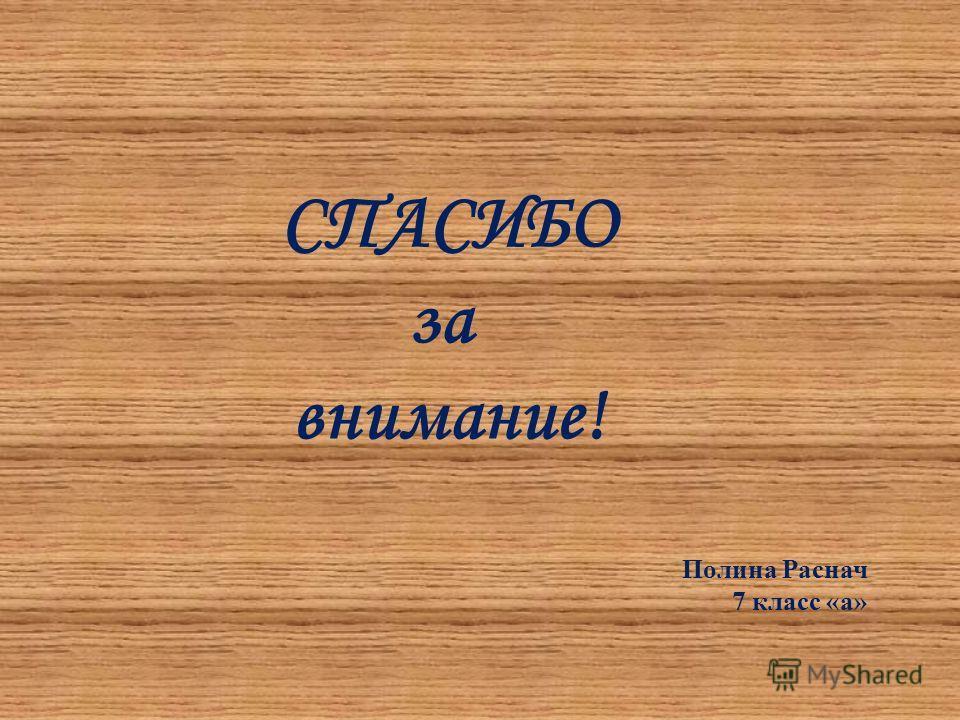 СПАСИБО за внимание! Полина Раснач 7 класс «а»